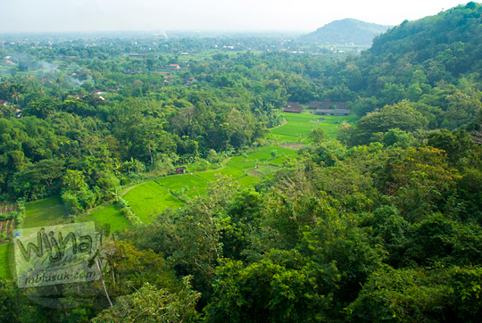 pemandangan desa di Yogyakarta yang masih hijau asri banyak pohon dari atas puncak bukit di Piyungan, Bantul