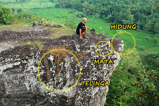 wujud batu besar di perbukitan Piyungan, Bantul pinggir tebing yang mirip dengan kepala hewan