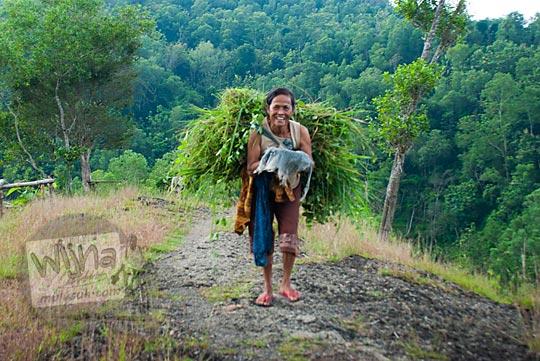 foto aktivitas ibu warga perempuan nenek-nenek desa ngalang di gedangsari gunungkidul pulang ngarit mencari rumput pakan ternak