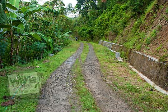 jalan semen dua lajur yang menanjak dikelilingi hutan menuju objek wisata green village gedangsari gunungkidul