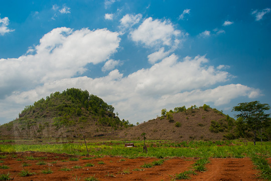 pemandangan ladang singkong kacang tanah yang kering dan tandus di kecamatan ponjong gunungkidul berlatar dua bukit gamping indah mirip payudara wanita langit biru cerah