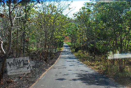pemandangan kondisi ruas jalan alternatif desa dari ponjong ke karangmojo yang banyak turunan