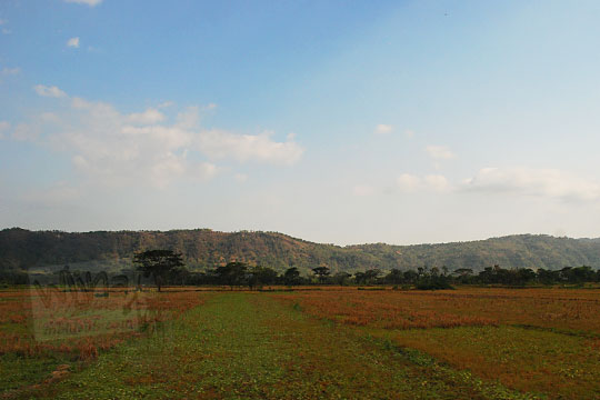 pemandangan indah barisan perbukitan gunung kidul dengan latar persawahan dilihat dari seputar wilayah cawas klaten jawa tengah