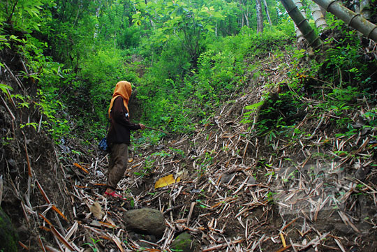 seorang cewek berjilbab kuning berdiri di tengah hutan angker yang berada di sekitar kawasan grojogan pucung seloharjo pundong bantul yogyakarta