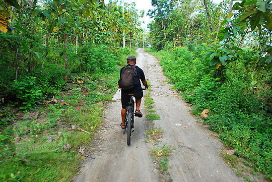 pria baju kaos hitam bersepeda di jalan setapak hutan di kawasan perbukitan Piyungan Bantul Yogyakarta