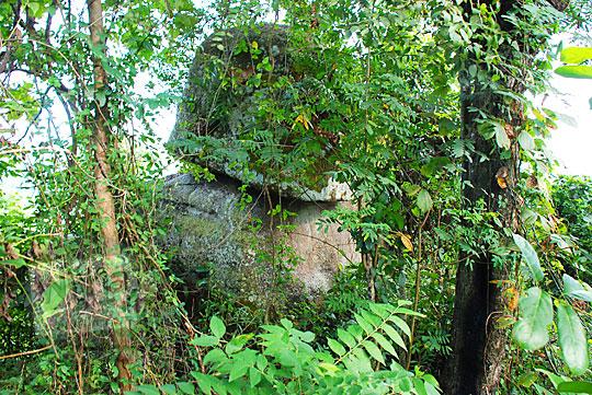 obyek menarik batu bersusun bernama watu tumpang lokasi di hutan perbukitan Piyungan Bantul Yogyakarta