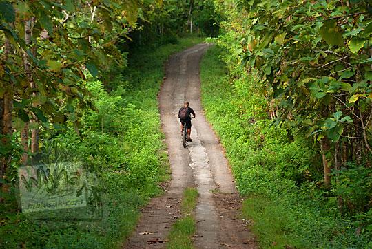pria berkaos hitam bersepeda di jalan hutan lebat yang menanjak di kawasan perbukitan Piyungan Bantul Yogyakarta