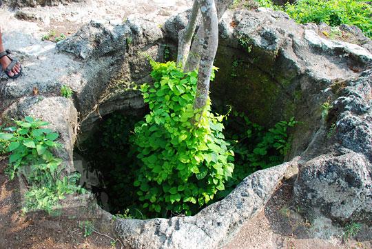 lubang besar di tebing watu tumpak di piyungan bantul yogyakarta yang dikeramatkan oleh penduduk sekitar karena tumbuh pohon besar angker