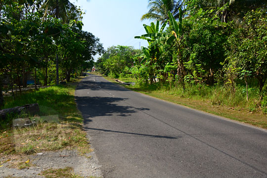 pemandangan suasana pedesaan Jawa rumah-rumah warga yang sepi dan damai di sepanjang ruas jalan sentolo ke brosot di wilayah kabupaten Kulon Progo Yogyakarta