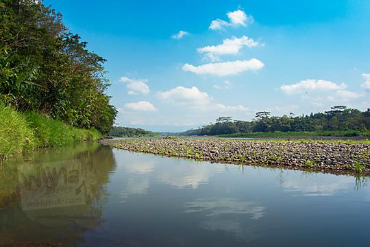 lokasi pinggir pesisir Kali Progo di wilayah Sentolo Kulon Progo yang cocok bisa dipakai oleh anak-anak bermain air dan sekaligus piknik bersama keluarga