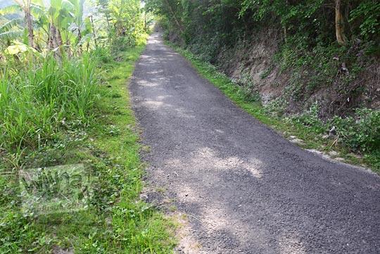 suasana sepanjang jalan tanjakan di pinggir sawah wilayah desa pucungsari wukirsari imogiri bantul yogyakarta