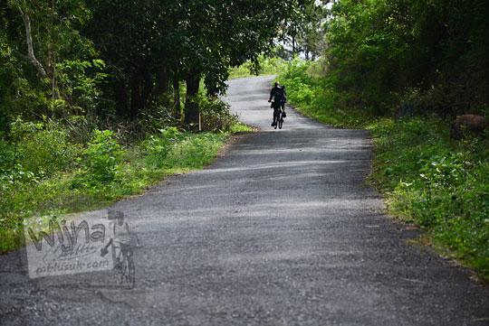 seorang pesepeda yogya difoto dari belakang sedang berusaha mengayuh sepeda melintasi tanjakan di dusun ngliseng bantul yang menghubungkan desa pucungsari wukirsari dengan obyek wisata puncak becici dan pinus asri mangunan