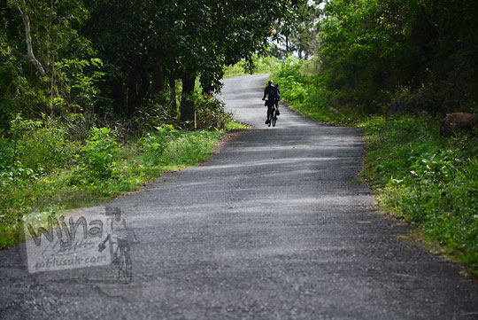 seorang pesepeda yogya difoto dari belakang sedang berusaha mengayuh sepeda melintasi tanjakan di dusun ngliseng bantul yang menghubungkan desa pucungsari wukirsari dengan objek wisata puncak becici dan pinus asri mangunan