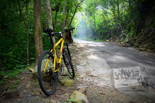 pose sepeda gunung mtb warna kuning di tengah hutan bantul dengan efek ray of light
