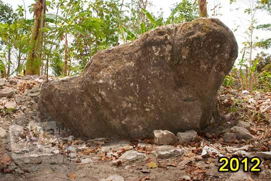 kondisi wujud situs watus gajah di dekat gapura dusun gambyong desa ngoro-oro patuk gunungkidul pada zaman dulu tahun 2012