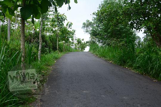 pemandangan jalan desa berwujud tanjakan terjal yang dikelilingi pohon-pohon ke arah rumah pompa air desa wukirharjo prambanan sleman yogyakarta