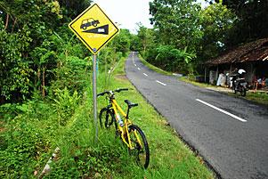 Nyepeda Nanjak di Girimulyo via Dukuh Tompak