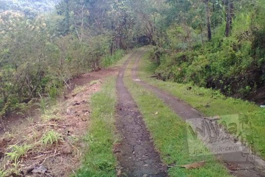 jalan desa menuju air terjun yohnan di desa mertelu gedangsari gunungkidul yogyakarta pada zaman dulu mei 2017