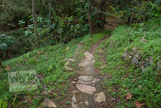 jalan tanah masuk hutan menuju obyek wisata grojokan yonan banyutibo di desa mertelu gedangsari gunungkidul yogyakarta pada zaman dulu mei 2017