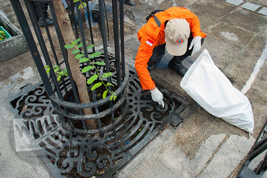petugas satgas kebersihan kota yogyakarta memungut sampah yang dibuang sembarangan di lubang pohon area pedestrian baru malioboro saat bersih-bersih pagi selasa wage