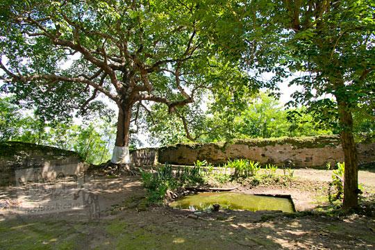 mitos mata air sendang moyo yang angker di makam gunung kelir pleret