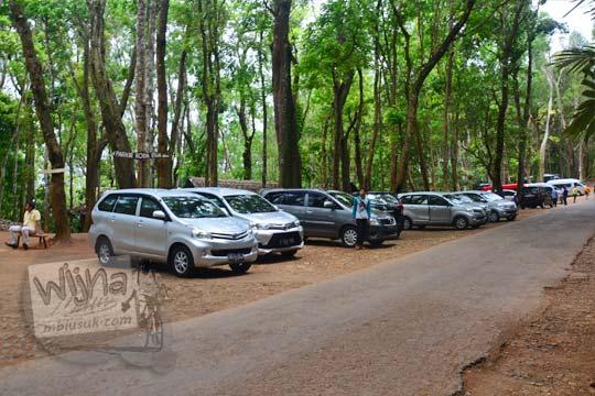 tempat parkir mobil di pinggir jalan kawasan hutan pinus mangunan bantul