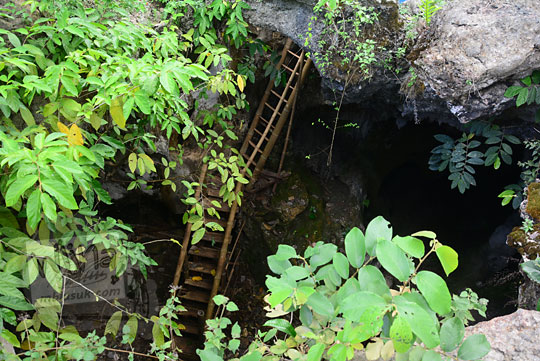tangga kayu lubang vertikal goa gajah di mangunan dlingo bantul