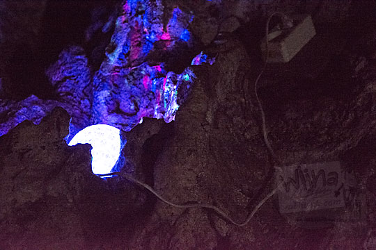 penerangan lampu disko warna warni di dalam goa gajah di mangunan dlingo bantul
