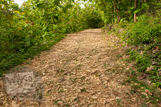 kondisi jalan rusak ke laut bekah gunungkidul yogyakarta pada zaman dulu september 2013