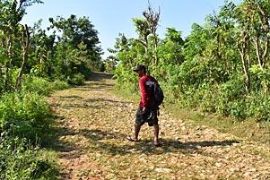 Thumbnail artikel blog berjudul Hidup itu Seperti Menapaki Jalan Rusak Pantai Timang