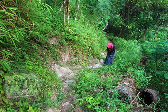 perempuan kelelahan berjalan kaki di dalam hutan