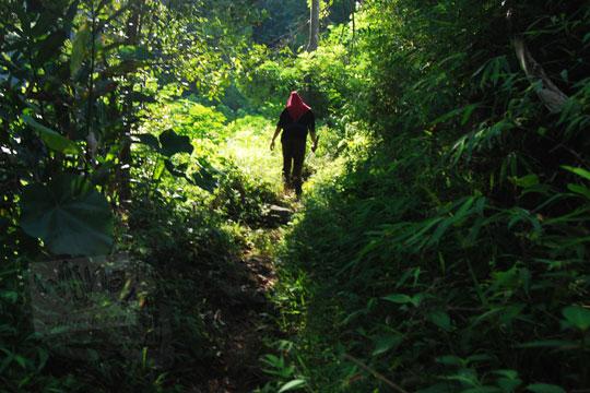 siluet wanita sedang berjalan menembus semak lebat di dalam hutan