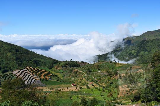 pemandangan jalan setapak melintasi ladang berbukit di atas awan di desa sembungan wonosobo pada zaman dulu Agustus 2016