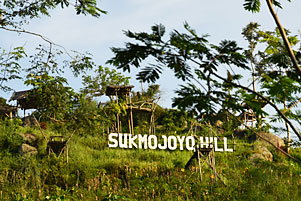 Thumbnail untuk artikel blog berjudul Ketika Dwi Jengkel ke Punthuk Sukmojoyo