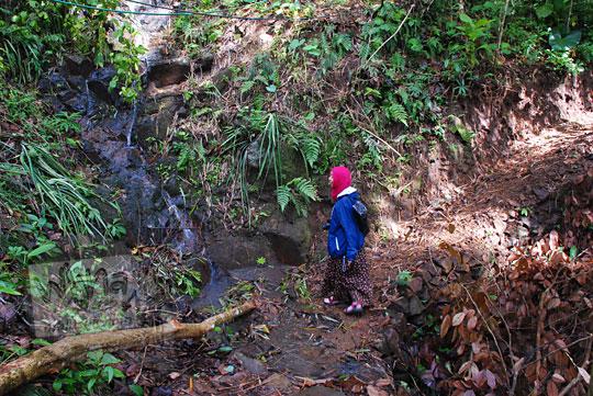 jalan setapak tanah menuju ke curug tamansari di desa kemejing loano purworejo