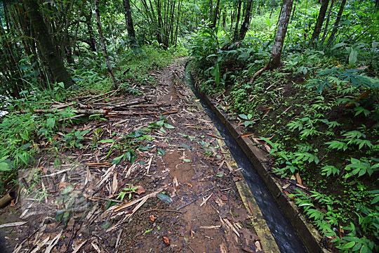 selokan saluran irigasi di kawasan wisata curug tamansari desa kemejing loano purworejo