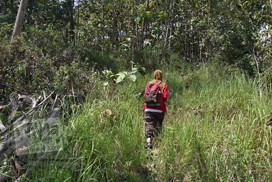 perempuan jalan semak hutan jati suruh semarang