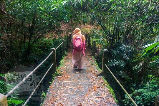 jembatan di dalam hutan menuju ke arah curug titang di nampirejo temanggung jawa tengah
