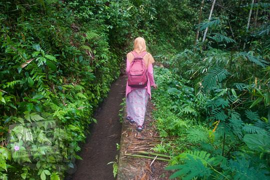 seorang perempuan dengan rok dan jilbab sedang berjalan kaki menyusuri saluran irigasi di hutan kawasan curug titang di nampirejo temanggung jawa tengah