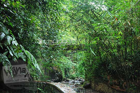 keberadaan curug kecil tersembunyi di dekat jembatan nampirejo temanggung jawa tengah