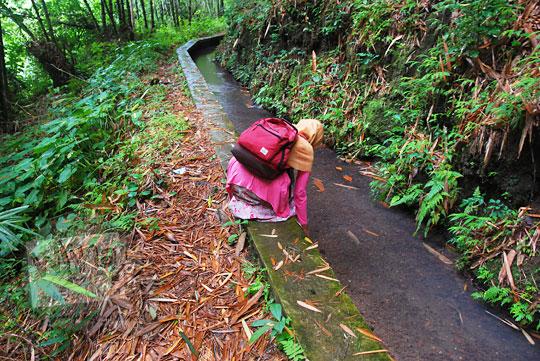 seorang perempuan sedang jongkok memegang air di pinggir saluran irigasi di dalam hutan menuju ke curug titang di nampirejo temanggung jawa tengah