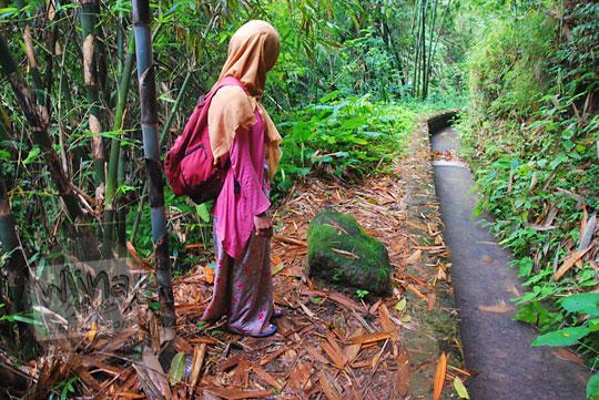 seorang perempuan sedang berdiri memandang jalan di pinggir saluran irigasi di dalam hutan menuju ke curug titang di nampirejo temanggung jawa tengah