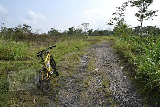 bersepeda blusukan di persawahan tempel sleman