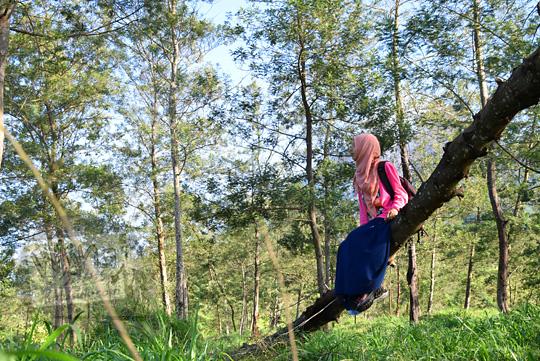 cewek berjilbab berpose duduk di atas batang pohon di dalam hutan kali talang di balerante kemalang klaten jawa tengah pada zaman dulu april 2018
