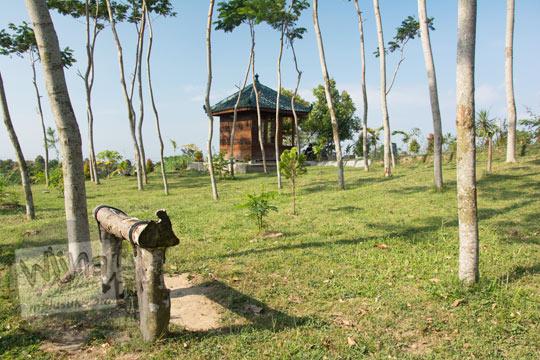 taman asri yang ditumbuhi pohon sengon di kompleks candi sari cepogo boyolali pada zaman dulu Agustus 2017
