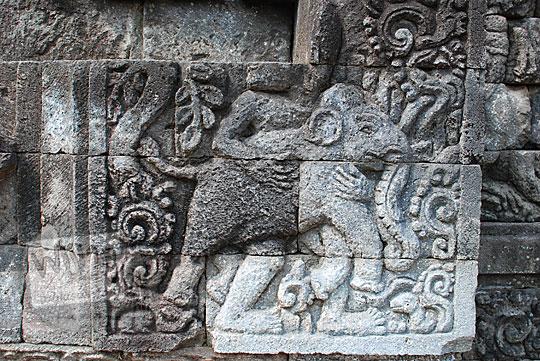 panel relief gajah candi perwara tegowangi kediri