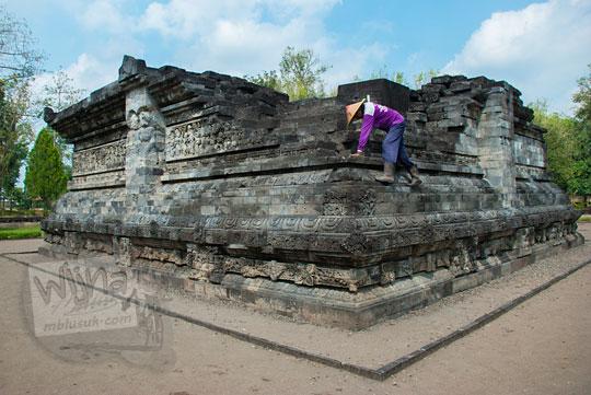 juru pelihara membersihkan lumut dengan memanjat candi tegowangi di Kediri Jawa Timur pada zaman dulu September 2016