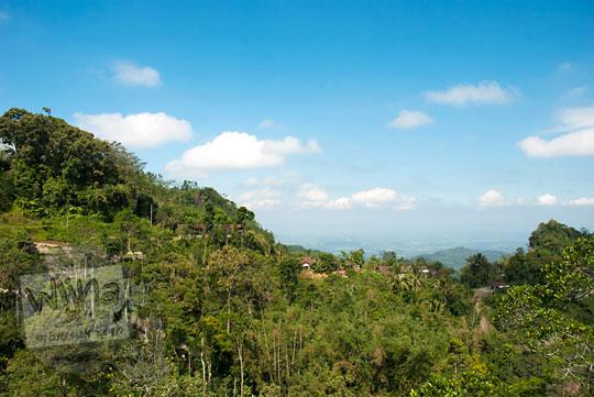 pemandangan perkebunan kopi menoreh kulon progo zaman dulu pada Mei 2017