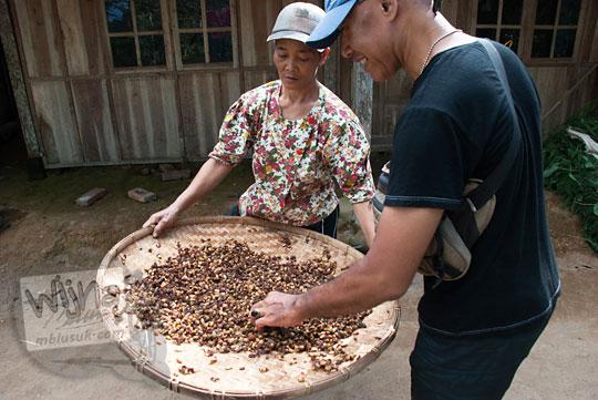 wisatawan membeli biji kopi menoreh langsung dari petani kopi di desa puncak suroloyo pada zaman dulu Mei 2017