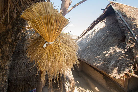 gabah kering ikat di desa adat sade lombok